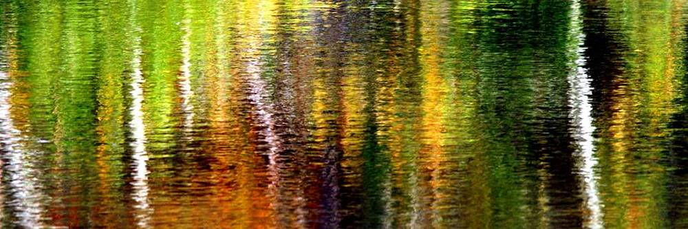 Autumn Abstract 5 by Matthew Grice