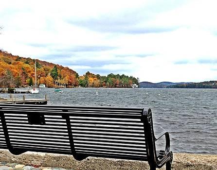 Autumn across the Lake by Sasha Wolfe
