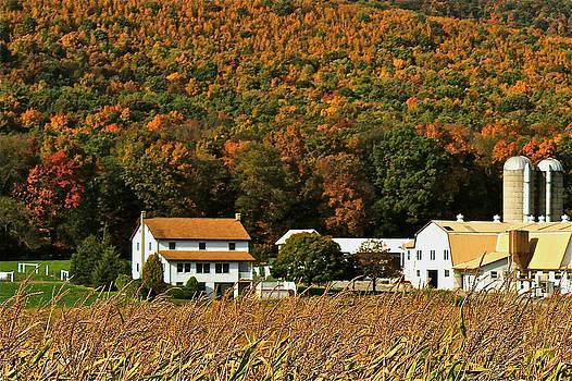 Autumn Amish Farm by Jim Cotton