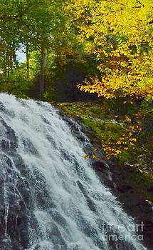 Autumn At Apple Creek Falls by Kathleen Struckle