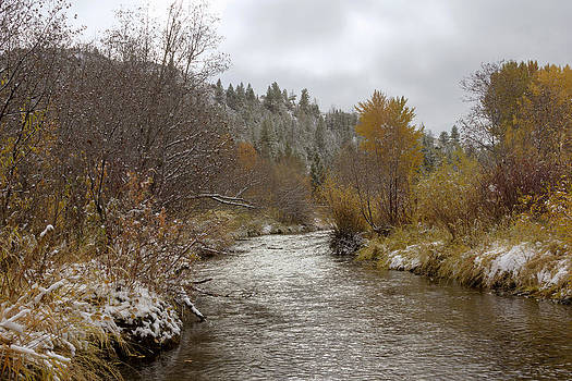 Autumn at Prickly Pear Creek by Dana Moyer