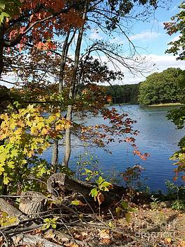 Autumn at Red Hill State Park by J Anthony Shuff
