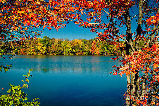 Autumn at the Lake by Tony Gliatta