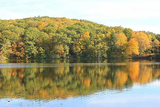 Autumn at the Pond by Don Pettengill