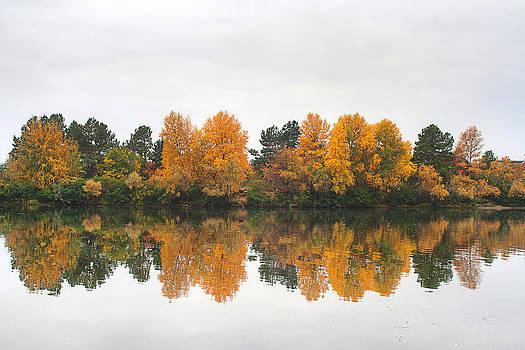 Matt Create - Autumn at the River