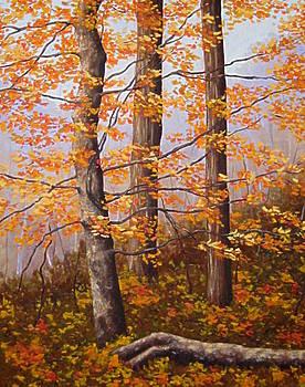 Autumn at Tishomingo State Park by Darla Brock