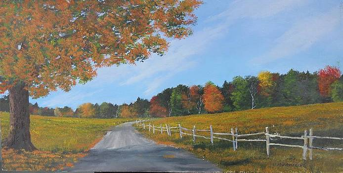 Autumn Backroad by Ken Ahlering