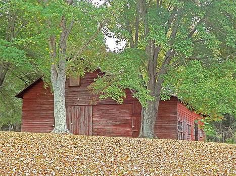 Autumn Barn by Bill Talich
