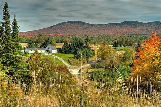 Autumn beauty by Suzanne Blais