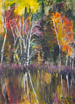 Autumn Beaver Lake Scene by Jeffrey Cohen