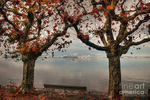Autumn Bench by Caroline Pirskanen