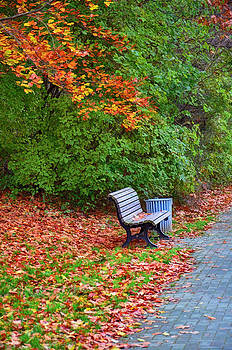 Gynt   - Autumn / bench