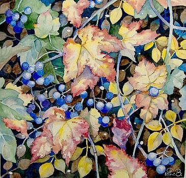 Autumn berries by Tania Vasylenko