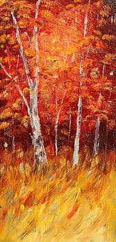 Autumn Birch Wood by Meaghan Troup