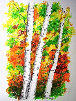 Autumn Birches by Catherine Howley