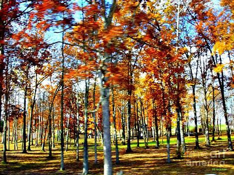 Autumn Blaze by Genevieve Price