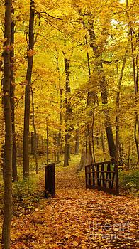Valerie Fuqua - Autumn Bridge III