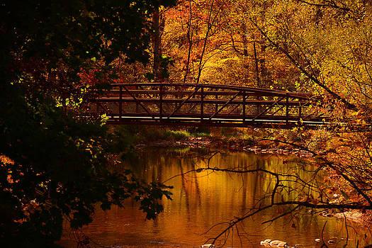 Raymond Salani III - Autumn Bridge