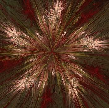 Autumn Burst Fractal  by Marisa Horn