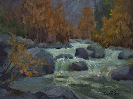 Diane McClary - Autumn Color Blewitt Pass