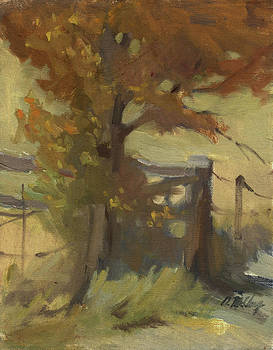 Diane McClary - Autumn Color