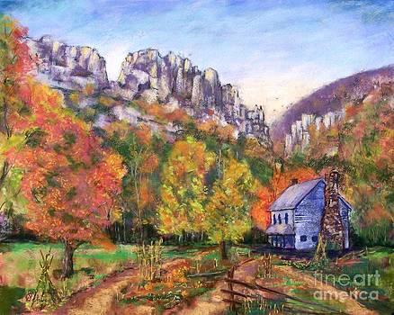 Autumn Color on Seneca by Bruce Schrader