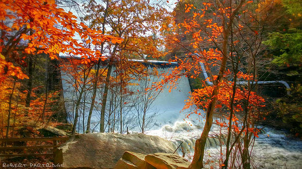 Autumn Colors 3 of 5 by Robert Partridge