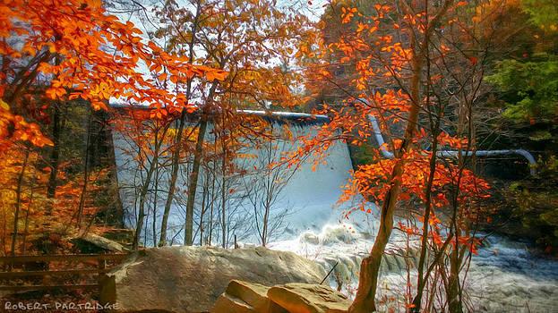 Robert Partridge - Autumn Colors 3 of 5