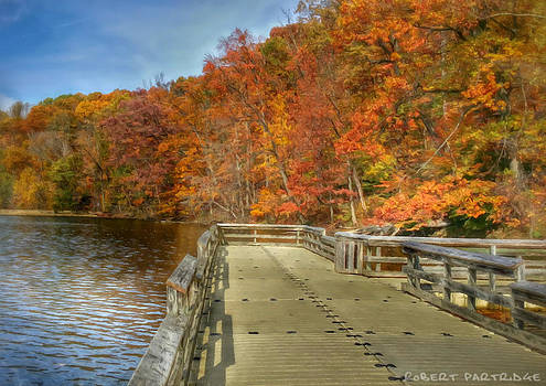Autumn Colors 5 of 5 by Robert Partridge