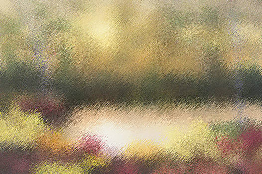 Autumn Colors - Abstract by Diane Romanello