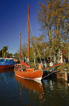 Autumn Colors at Zingst Germany by David Davies