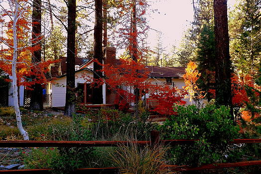 Autumn colors by Deborah Yeager