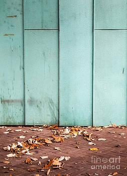 Autumn Colours by David Hanlon