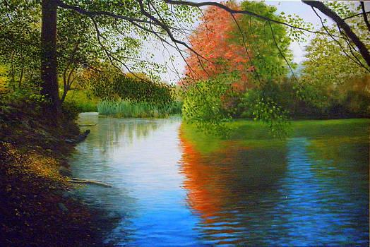 Autumn colours by Erno Saller