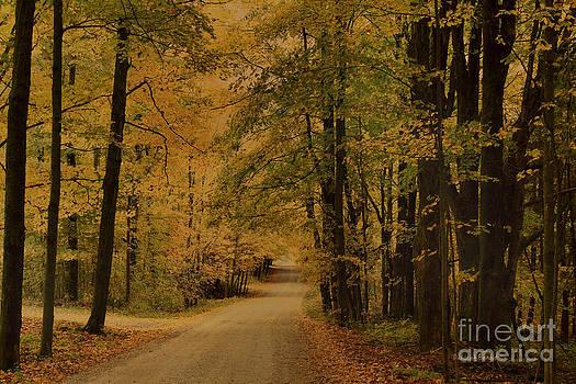 Deborah Benoit - Autumn Country Road