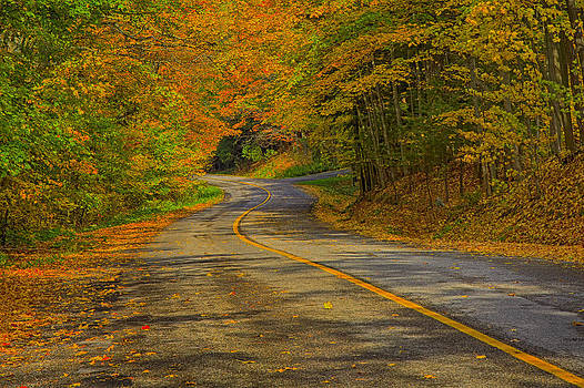 Gary Hall - Autumn Country Road