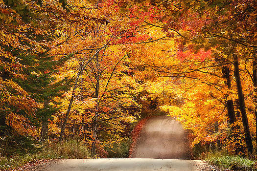 Autumn Country Road by Wade Crutchfield