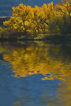 Jerry McElroy - Autumn Dance