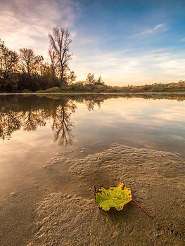 Autumn by Davorin Mance