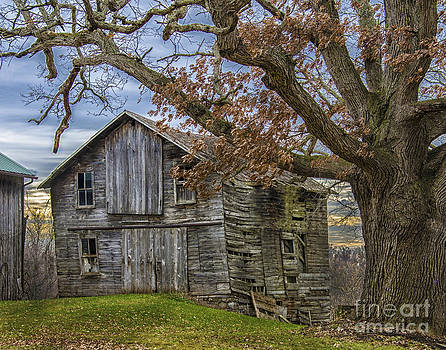 Autumn  Day On The Farm by JRP Photography