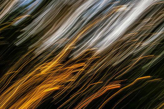 Steve Harrington - Autumn Desire