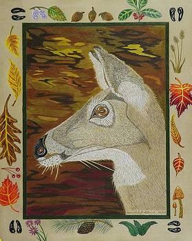 Autumn Doe   by Gerald Strine
