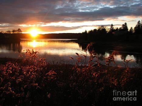 Christine Stack - Autumn Evening
