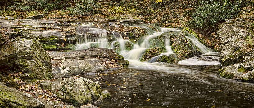 Heather Applegate - Autumn Falls
