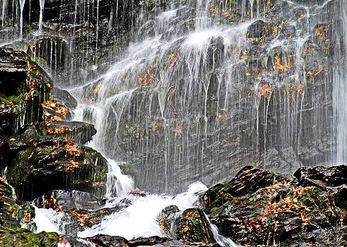 Autumn Falls by Sasha Wolfe