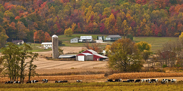 Randall Branham - AUTUMN FARMING SCENE