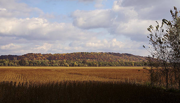 Autumn Fields Ready for Harvest by Jane Eleanor Nicholas