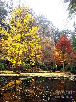 Autumn   by Fir Mamat