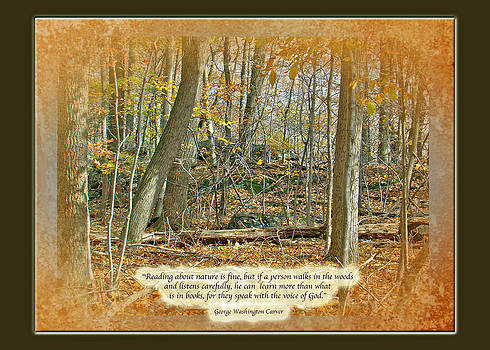 Mother Nature - Autumn Forest - George Washington Carver Quote