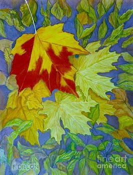 Autumn by Frances  Dillon